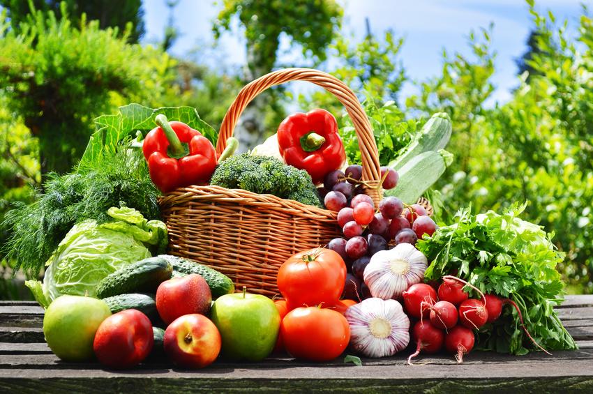 Für Lebensmittel aus ökologischem Anbau bezahlt man auch einen höheren Preis. Aber hat die Bio-Kost auch mehr gesunde Inhaltsstoffe? (Bildquelle: © monticellllo - Fotolia.com)