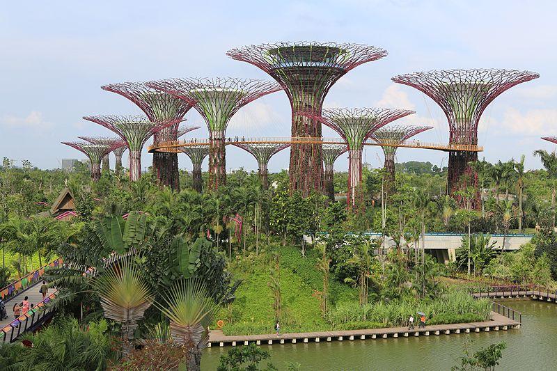 Vieles, was futuristisch wirkt, ist bereits heute Realität, wie hier zum Beispiel das Supertree Grove in Singapur. (Bildquelle: © Shiny Things/wikimedia.org; CC BY-NC 2.0)