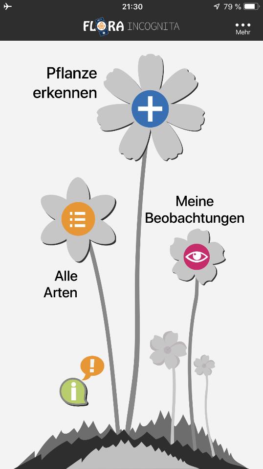 In der App werden alle eigenen Pflanzenbestimmungen in Form eines digitalen Herbariums angelegt. So kann man jederzeit auf seine Beobachtungen zurückgreifen.