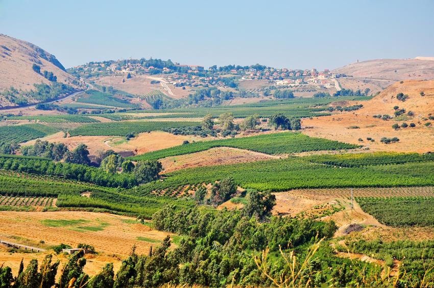 Landschaft im Norden Israels: Regenreiche und sehr trockene Gebiete liegen hier nah beieinander. (Bildquelle: © larisap - Fotolia.com)