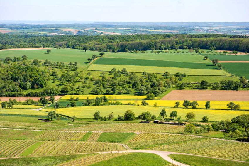 Mehr Strukturen in der Landschaft (Hecken, kleinere Äcker, Wege, Feldgehölze) fördern die Biodiversität. (Bildquelle: © aldorado / Fotolia.com)