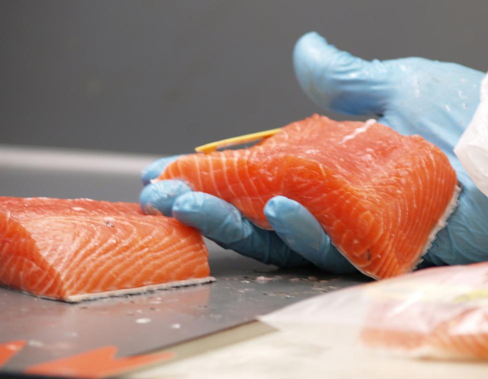In Lachs sind pro 100 g Fisch zwischen 1,0 und 1,8 g EPA und DHA enthalten. Besonders viel steckt auch in Hering und Sardinen. Nun jedoch nur noch Hering zu essen, wäre natürlich falsch. Wer ab und zu Fisch greift, macht im Grunde alles richtig.