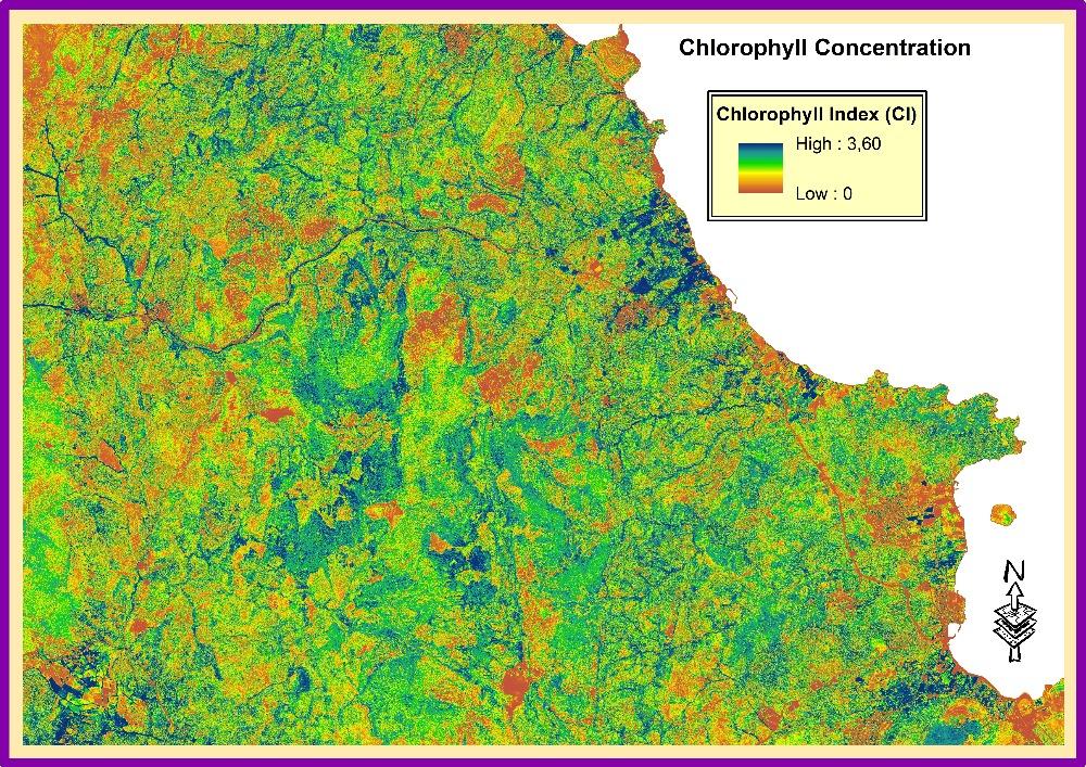 Satelliten, die mit spektralen Sensoren ausgestattet sind, können dabei helfen, Pflanzenarten anhand ihres spezifischen Gehalts an biochemischen Merkmalen, wie Chlorophyll-, Cellulose- oder Wassergehalt, zu unterscheiden und zu erfassen.