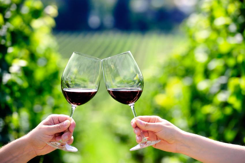 Eine Lebenszyklusanalyse von kalifornischem Wein zeigte, dass die Weinlese von Hand zwar beste Qualität garantiert und somit höhere Preise, im Vergleich zur maschinellen Ernte jedoch die Umwelt stärker belastet.