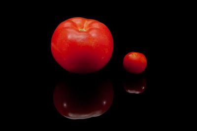 Verglichen mit der Kulturtomate sind die Früchte der ursprünglichen Wildsorte vergleichsweise klein. In der Regel beträgt ihr Durchmesser gerade mal einen Zentimeter.