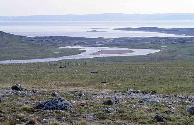 Das Klima und die Vegetation haben sich in den subpolaren und polaren Gebieten in den letzten 30 Jahren stark verändert. (Quelle: © Ansgar Walk / wikimedia.org; CC BY-SA 2.5)