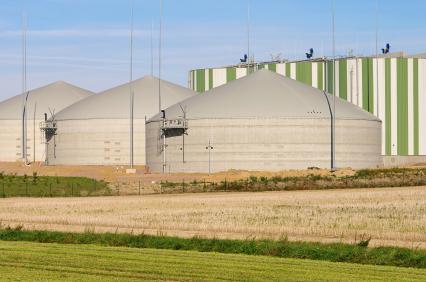 Biomasse kann beispielsweise in Biogasanlagen vergärt und somit energetisch genutzt werden.
