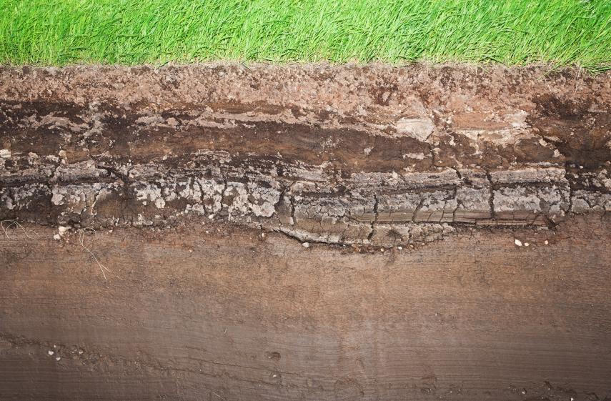 Bodenprofil: Was passiert mit dem Nitrat im Boden? (Quelle: © iStockphoto.com/klikk)