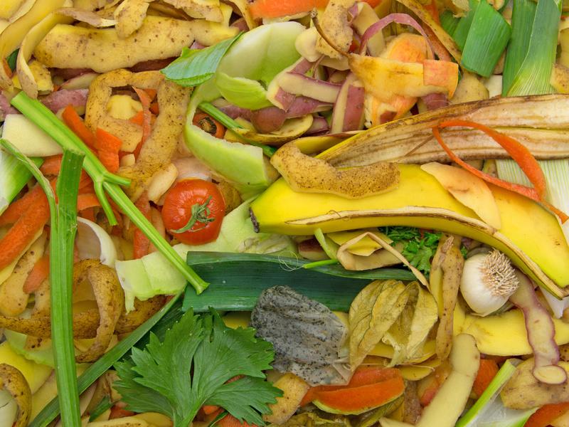 Viel zu viel Essen landet im Mülleimer. (Quelle: © MSchuppich/ Fotolia.com)