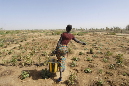 Auch arme Regionen dieser Erde müssen bei der Umsetzung dieser Vision mit bedacht werden. Viele arme Bauern sind auf die Landwirtschaft angewiesen, um nicht zu verhungern.
