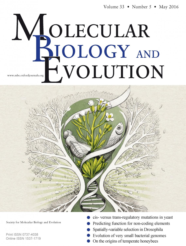 Die Forschungsarbeit aus Halle ist auf der Titelseite der aktuellen Ausgabe von