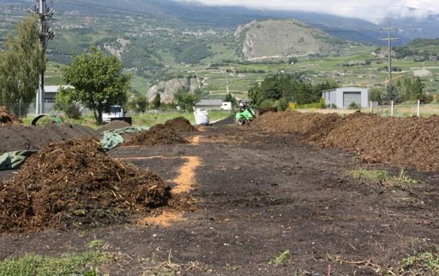 Feldexperiment: Bevor die Pflanzenkohle dazu gegeben wurde, türmten die Wissenschaftler Komposthaufen aus Stallmist auf.