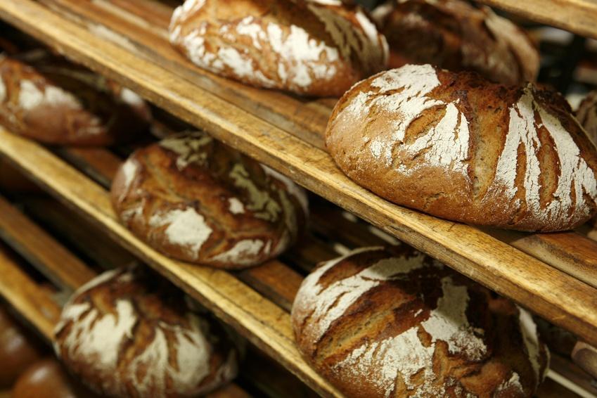 Roggenbrot: Roggen hat hervorragende Backeigenschaften und zählt daher zu den wichtigsten europäischen Brotgetreiden.