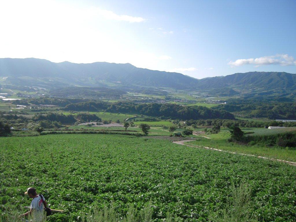 Kleinräumig strukturierte Agrarlandschaft in Haean/Südkorea – viele Habitate auf kleinem Raum.