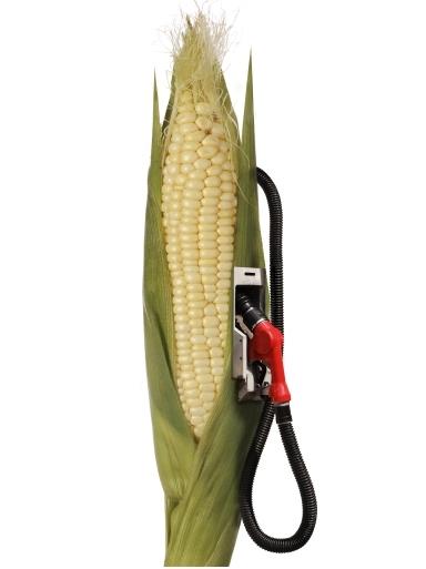 Die Klimabilanz von Biokraftstoffen ist schwer zu messen.