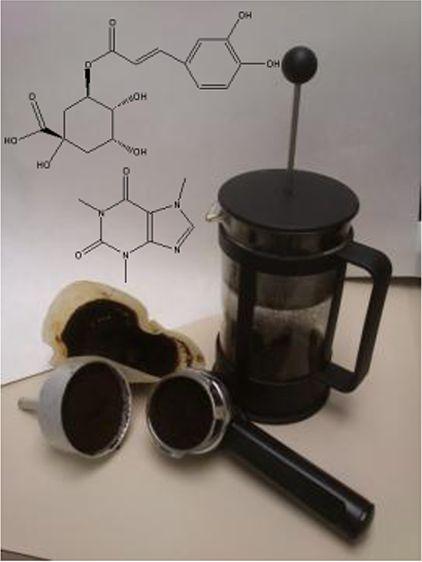 Kaffeesatz, der bei Filter- und Espressomaschinen anfällt ist reich an Antioxidantien.
