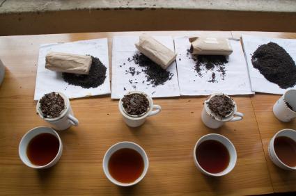 Dem Geschmack und der Qualität auf der Spur - Tee-Test in Sri Lanka.