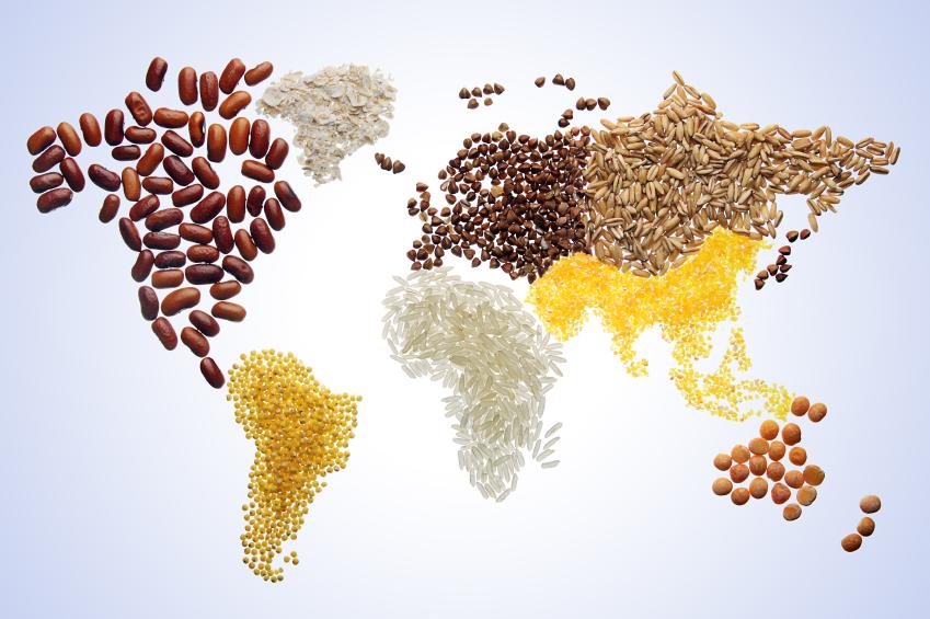 """Die """"Großen Fünf"""", Weizen, Mais, Reis, Maniok und Soja, sind die Hauptanbauprodukte der Welt."""