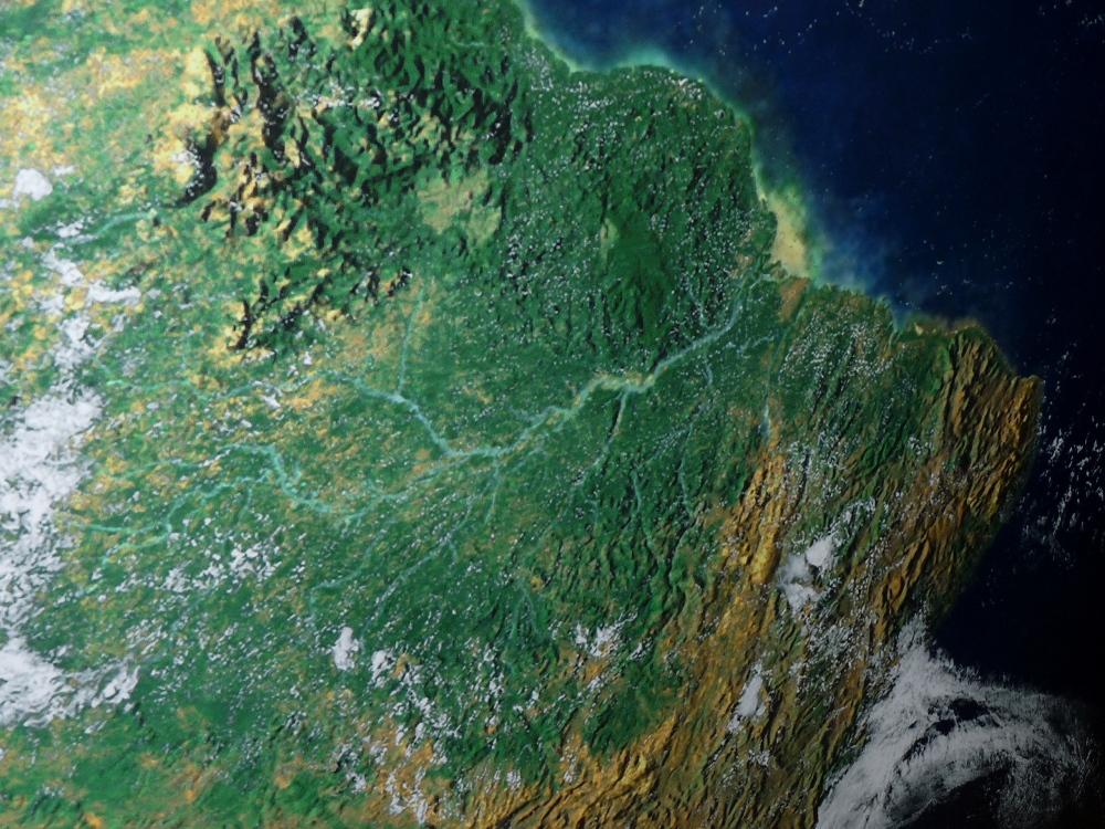 Der Greening-Effekt ist aus dem All bestens zu sehen. Für die Untersuchung griffen die Forscher auf die Aufnahmen von drei Satelliten zurück. Im Bild zu sehen ist der Norden des Amazonas.