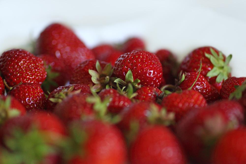 Mit Seiden-Fibroin behandelte Erdbeeren sind ungekühlt auch nach einer Woche noch saftig und lecker. (Bildquelle: © Erwin Lorenzen / Fotolia.com)