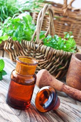 Nah verwandte Heilpflanzen wurden in verschiedenen Teilen der Welt ähnlich genutzt (Quelle: © PhotoSG - Fotolia.com).