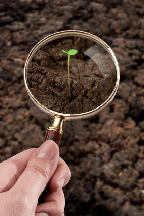 Bakterienreste fördern die Bodenbildung (Quelle: © iStockphoto.com/ Ugurhan Betin).