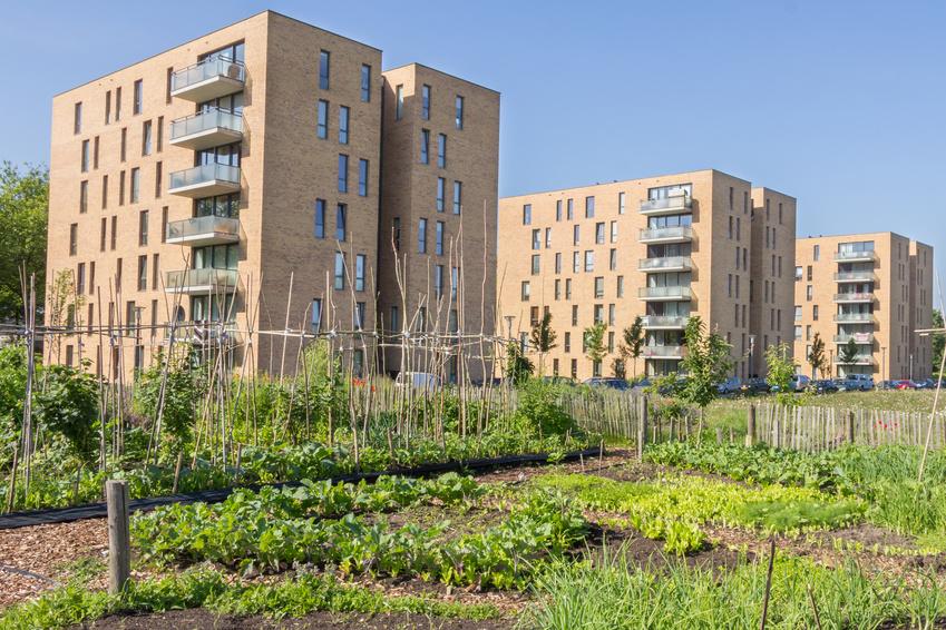 Ein beliebter Trend: Gärtnern in der Stadt. (Bildquelle: © HildaWeges - Fotolia.com)