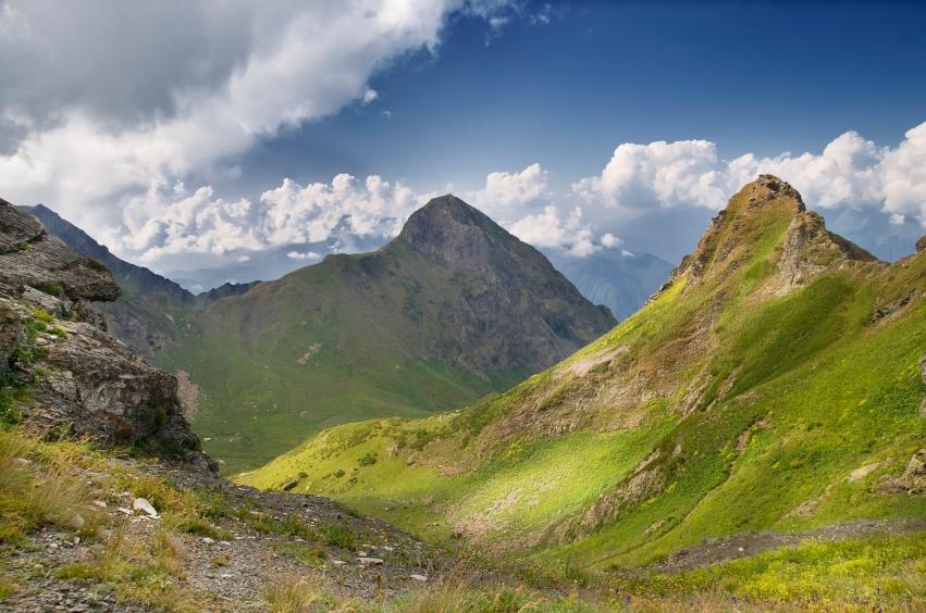 Die Forscher untersuchten die Auswirkungen der globalen Erwärmung bei 50 alpinen Pflanzenarten im nordwestlichen Kaukasus-Gebirge.