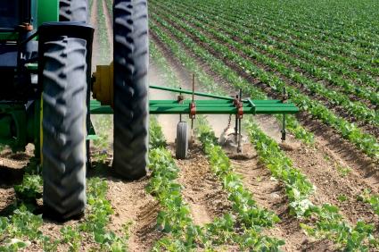 Die heutige Landwirtschaft steigert ihre Produktivität - aber noch nicht genug. Und die intensive Landbewirtschaftung hat Nebenwirkungen:Erosion, Boden- und Gewässerbelastung und Klimaerwärmung.