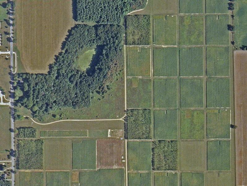 Satellitenbild des Anbauversuchs der verschiedenen Anbausysteme. Jedes Rechteck misst zirka einen Hektar Fläche (Quelle: © SPOT Image).