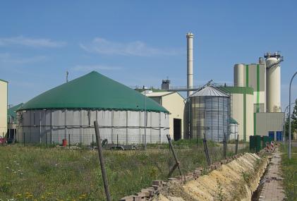 Biogasanlage: Aus vielen unterschiedlichen organischen Ausgangsstoffen kann Biogas gewonnen werden, darunter Energiepflanzen, Bioabfall, aber auchtierische Exkremente.