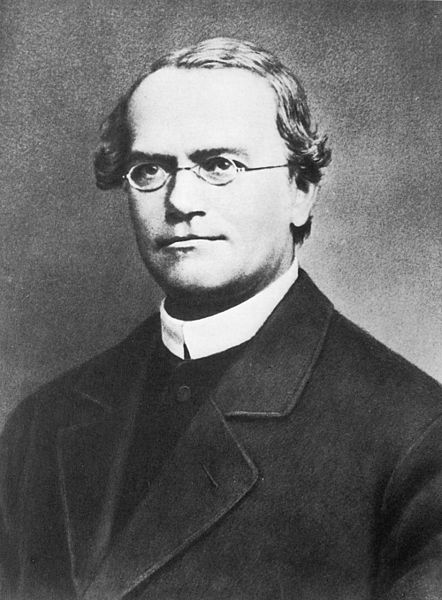 Gregor Mendel (1822 - 1884): Mönch, Naturforscher und