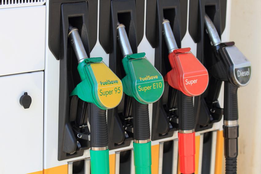 Das Bakterium Zymomonas mobilis könnte dafür sorgen, dass die Herstellung von Biokraftstoffen der zweiten Generation bald wirtschaftlich wird. Dann wären diese Kraftstoffe eine nachhaltige Alternative zum Erdöl.