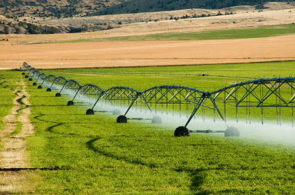 Im Zuge des Klimawandels wird die Landwirtschaft in vielen Regionen zunehmend von künstlicher Bewässerung abhängig sein.