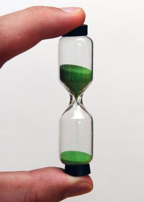 Das Sanduhr-Modell der embryonalen Entwicklung scheint auch für Pflanzen zu gelten. (Quelle: © Stefan Merkle / Fotolia.com)