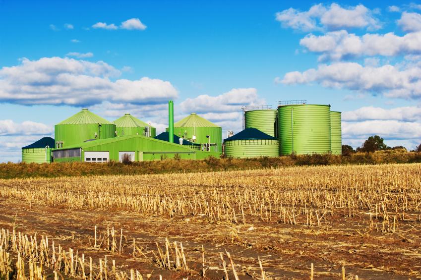 In Biogasanlagen wird Biomasse vergoren, um daraus Biogas zu gewinnen.
