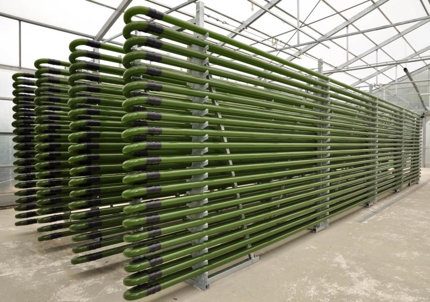 Rohr-Bioreaktoren sind geschlossene Kultivierungssysteme, die sich durch einen hohen Reinheitsgrad, hohe Produktivitätsraten und eine flexible Skalierung auszeichnen.