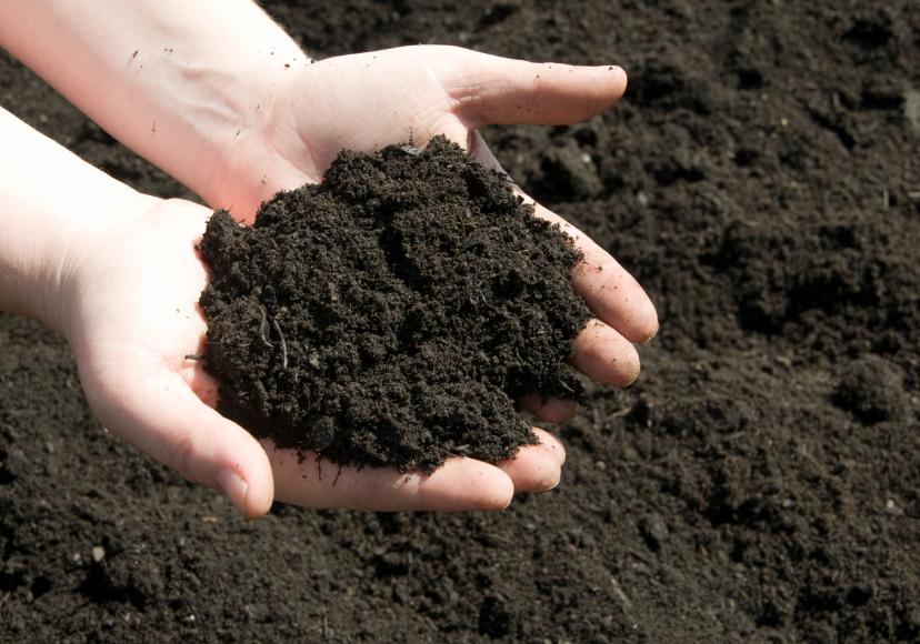 Der Boden ist eine unverzichtbare Ressource und ist zugleich Bestandteil der globalen Stoffflüsse. (Bildquelle: © iStock.com/Stacey Newman)