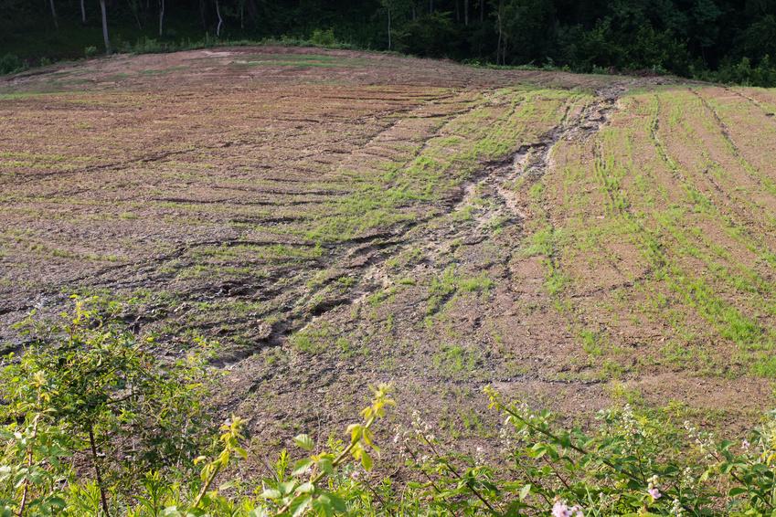 Bodenerosion kann eine negative Folge der Hochertragslandwirtschaft sein.