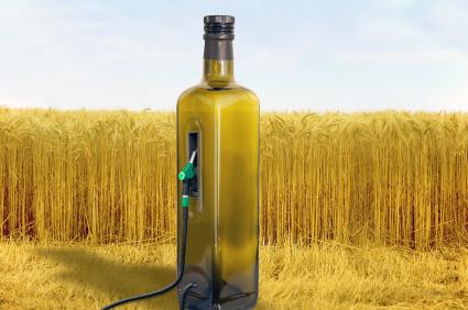 Deutschland solle den weiteren Ausbau von Bioenergie stoppen, fordert die Leopoldina. (Quelle: © iStockphoto.com/ Rolf Fischer)