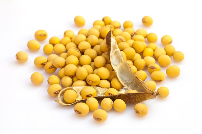 Die Forscher untersuchten 60 Nutzpflanzen, darunter auch Sojabohnen.