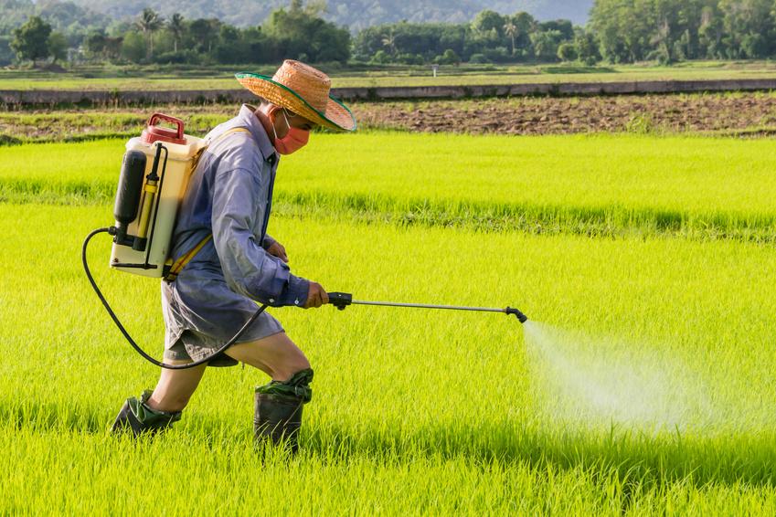 Eine andere Studie zeigt, wie wichtig ein Umdenken beim Gebrauch von Insektiziden ist.
