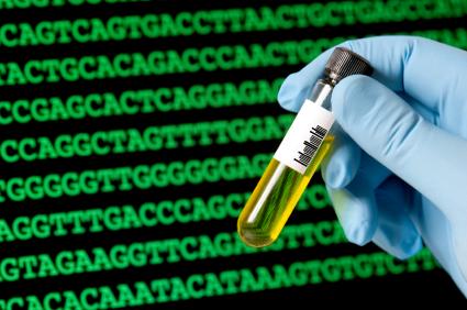 Basenfolgeneiner sequenzierten DNA.