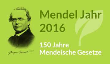Im Jahr 1866, also vor über 150 Jahren veröffentlichte der Naturforscher und Mönch Gregor Mendel seine drei Mendelschen Regeln. Daher wurde 2016 zum Mendel Jahr erklärt. Mehr erfahren über Gregor Mendel...