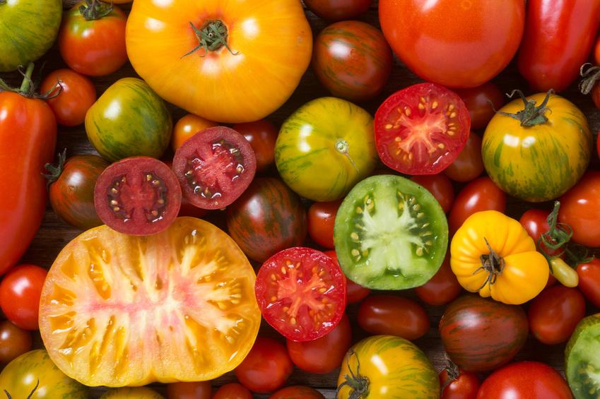 Durchschnittlich 27 Kilogramm Tomaten isst jeder Bundesbürger pro Jahr.