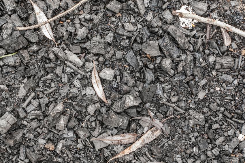Pflanzenkohle entsteht bei der Zersetzung (Pyrolyse) von organischem Material. (Bildquelle: © okrip/ Fotolia.com)