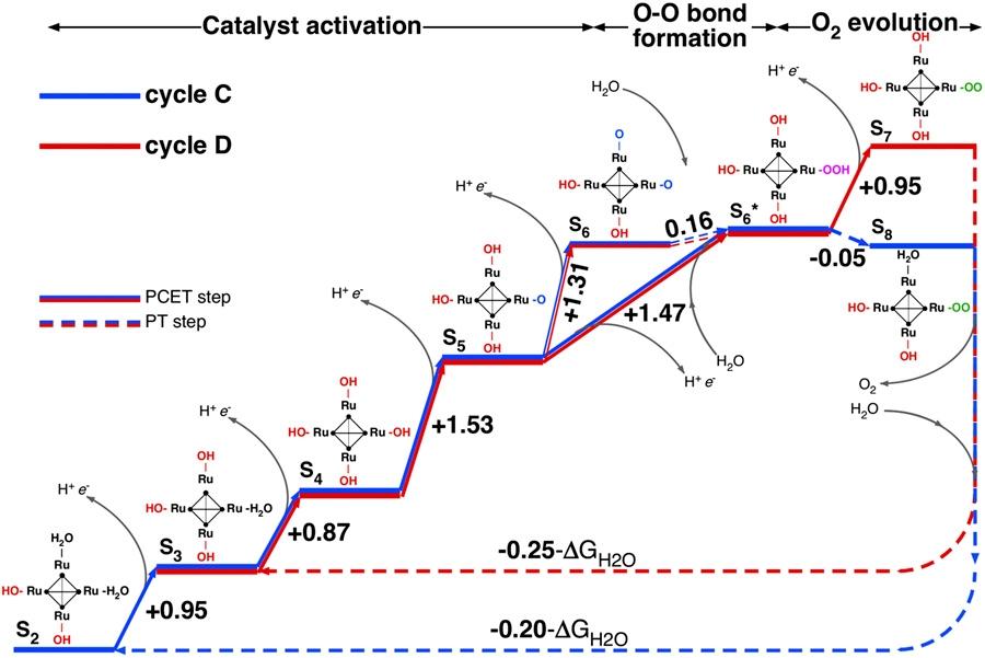 Ablauf der Reaktionen am Ru4-POM-Molekül (Quelle: © Piccinin et al. 2013)