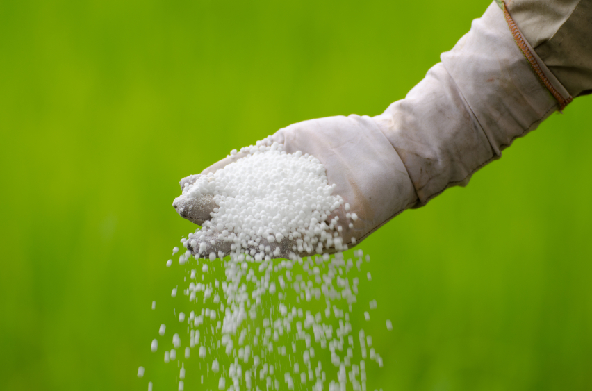 Nitrat ist eine Stickstoffverbindung, die direkt von den Pflanzen aufgenommen werden kann. Es gelangt hauptsächlich durch Düngung in den Boden.