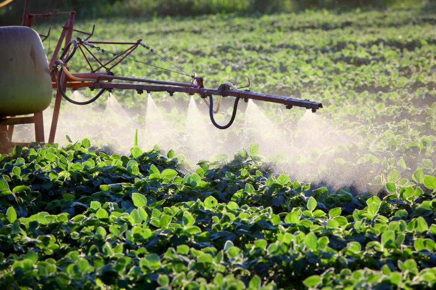 Ausbringen von Pflanzenschutzmitteln: In der modernen Landwirtschaft sind Pestizide nicht mehr wegzudenken. (Quelle: © iStockphoto.com/simazoran)