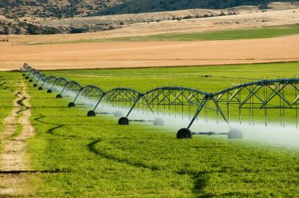 Müssen für die Landwirtschaft zusätzliche Wasserquellen zum natürlichen Niederschlag erschlossen werden spricht man vom Bewässerungsfeldbau.